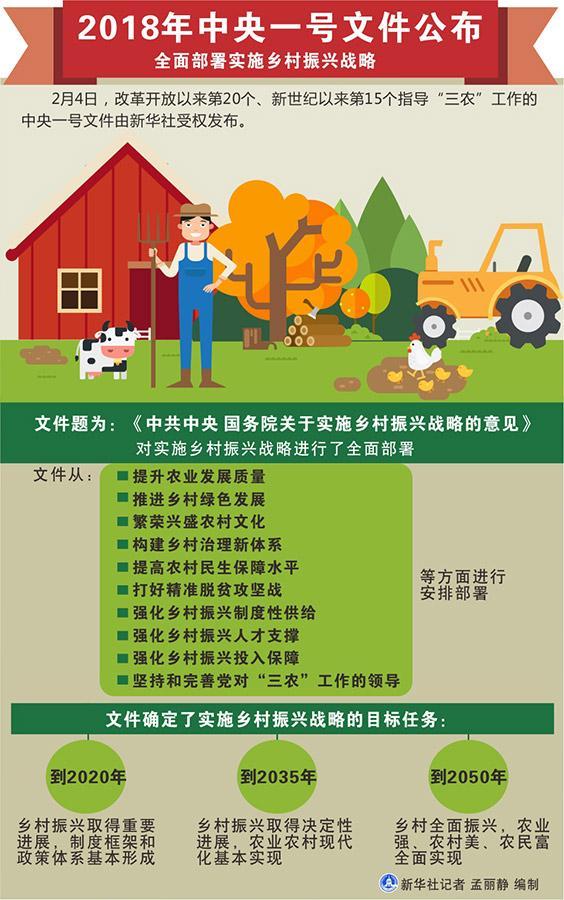 中央一号文件公布 全面部署实施乡村振兴战略